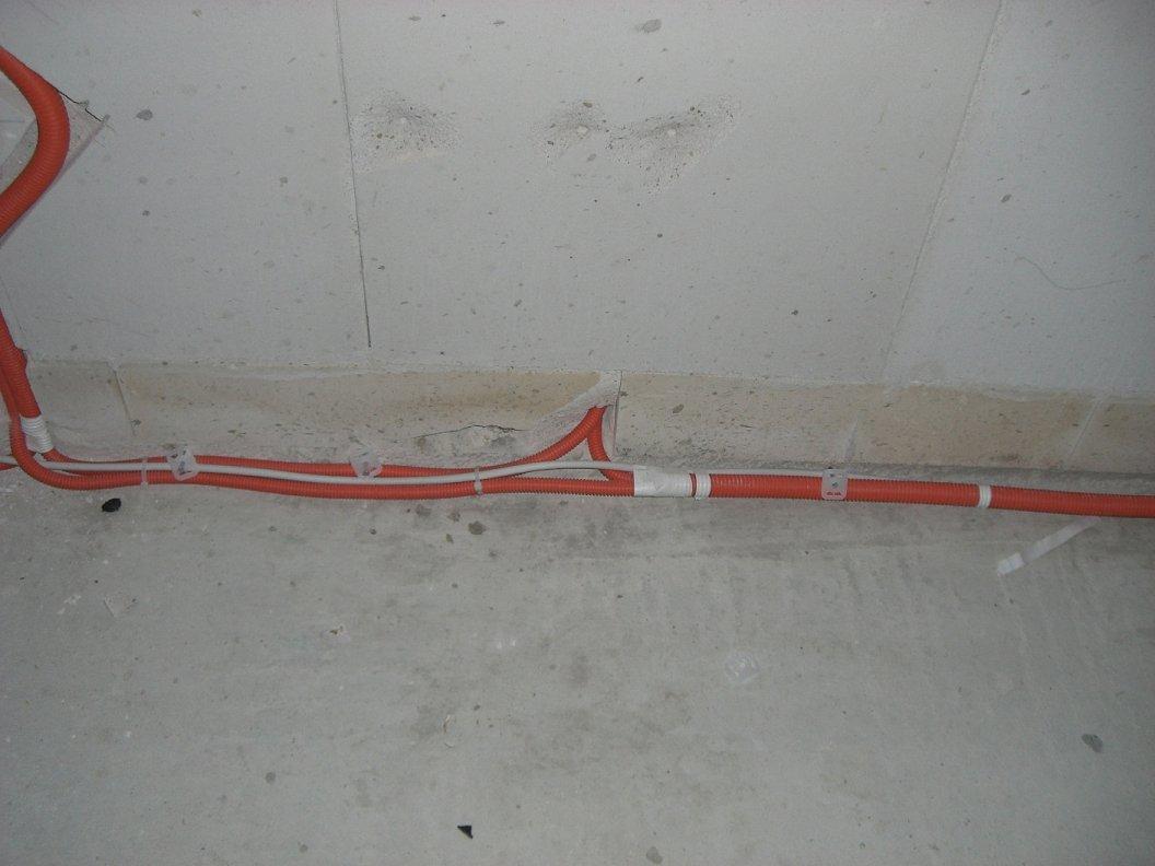 cimg3854